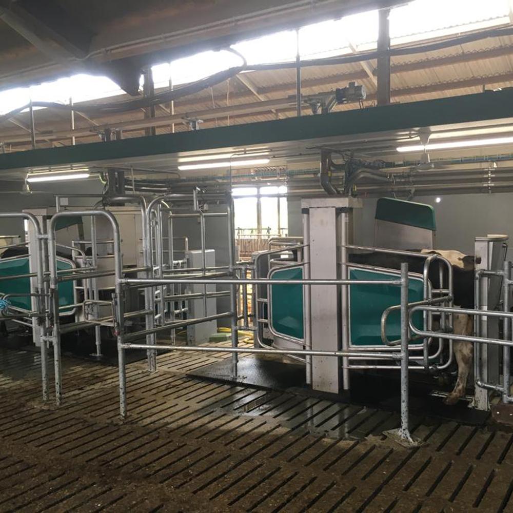 aanpassingen voor melkrobot in bestaande stal